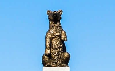 One of The Bears